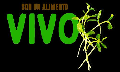 Los germinados son un alimento vivo